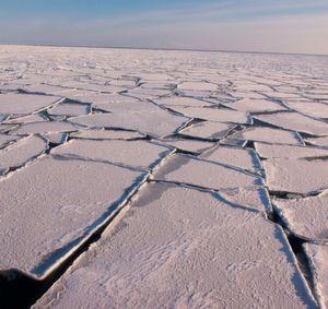 Forscher warnen vor höheren Wellen in der Arktis