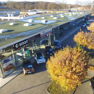 Die großen Autohändler: Peter-Gruppe