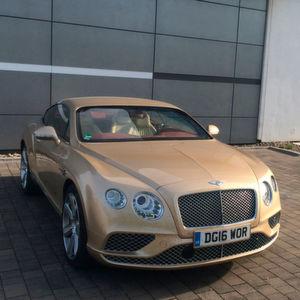 »kfz-betrieb« Auto-Check: Bentley Continental GT W12