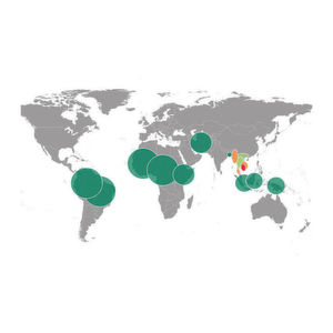 Malaria-Wirkstoff-Resistenz vor allem in Südost-Asien