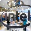 Intel erwägt Verkauf von IT-Sicherheitssparte