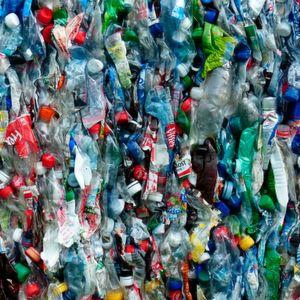 Verpackungsmaschinen, die Verpackung sparen