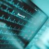 Endpoint und Firewall jetzt live im Gespräch