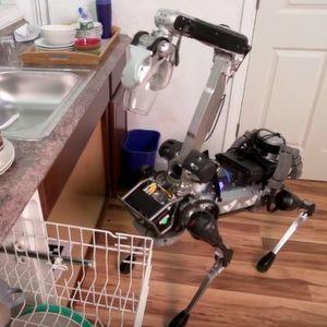 Robohund räumt Küche auf