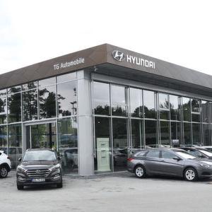 TG Automobile: Ein Leuchtturm für Sachsen