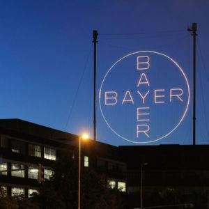 Monsanto Gives Bayer the Could Shoulder