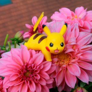 Pokémon-Jäger halten Polizei auf Trab