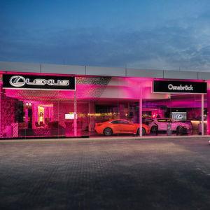 Die großen Autohändler: Wellergruppe