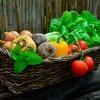 OWL will Industrie 4.0 in der Lebensmitteltechnologie umsetzen