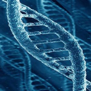 Synthetische Biologie für die Herstellung von Isobutanol