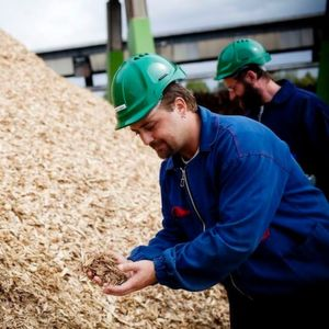 Extension of Biomass Network