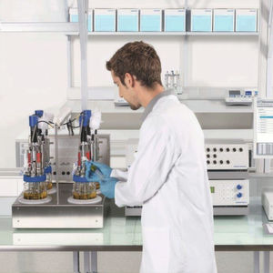 Gradienten im Visier – So optimieren Sie industrielle Bioprozesse