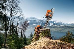 Die Stehendbaumfällung in alpiner Umgebung ist eine der Reportagen, mit denen STIHL Produkte sehr praxisnah präsentiert. Der entstandene Content wird über unterschiedliche Kanäle ausgespielt.