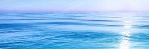 Von Enterprise-Distribution über Blue Ocean bis zur DevOps-Express Initiative
