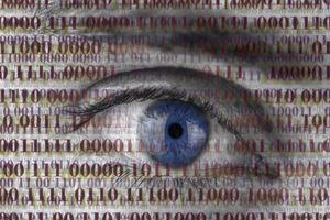 Ausgespäht: Jede Verbindung eines Geräts zum Netzwerk macht dieses Gerät und die Daten, die es über das Netzwerk austauscht, angreifbar.