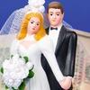 Avnet TS: die Braut in harten Fakten