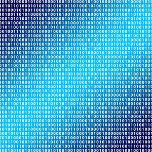 Schleppende Digitalisierung