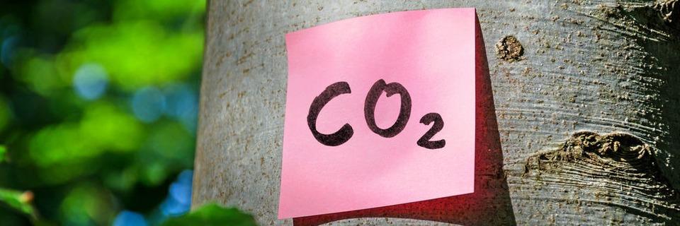 Kohlendioxid als Rohstoff aus der Luft