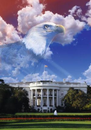 Amerika wählt