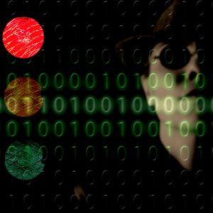 Darknet und Cybercrime gemeinsam bekämpfen