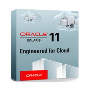 Oracle plant Integration von Docker in Oracle Solaris Zones