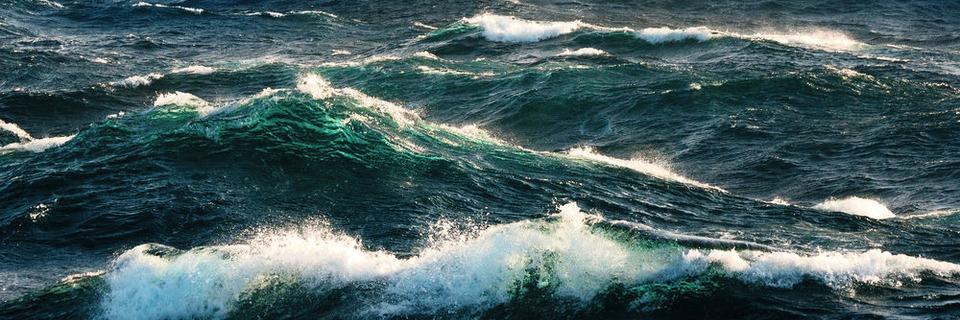 Umweltgifte im Meeresboden nachweisen