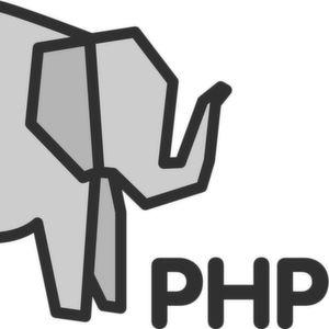 Web-Skriptsprachen wie PHP als Fehlerquelle