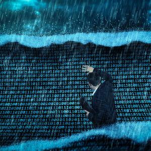 Immer Ärger mit den Daten-Messies