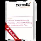 Erfolgsrezept für Software-Monetarisierung und Management