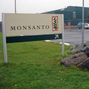 Nächste Hürde genommen: Monsanto-Aktionäre stimmen Bayer-Deal zu