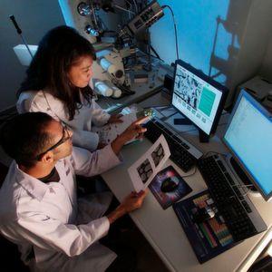 Investition in Forschung und Entwicklung so hoch wie nie zuvor