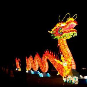 Industrieländer brauchen Antwort auf die chinesische Herausforderung