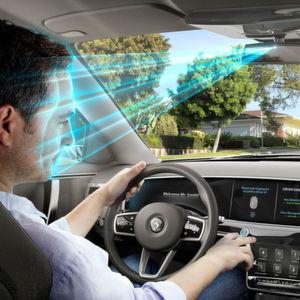 Biometrisches Zugangssystem für Fahrzeuge
