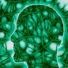 Tödliches Risiko für Nervenzellen