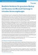 Granulares Backup und Recovery von Microsoft Exchange
