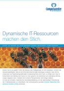 Dynamische IT-Ressourcen machen den Stich