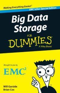 Big-Data-Storage Für Dummies