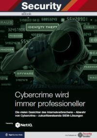 Cybercrime wird immer professioneller