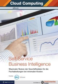 Self-Service Business Intelligence
