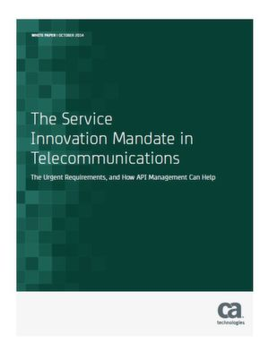 The Service Innovation Mandate in Telecommunications