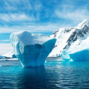 Variation als Überlebensstrategie – genetische Reaktion auf Sommer und Winter