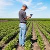 Landwirte wollen, dass Daten von Behörden gesammelt werden