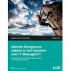 Welche Momente beeinflussen die Karriere des CIOs?