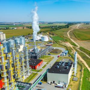 Anteil der Top 10 Länder an der weltweiten Produktion von Biokraftstoffen