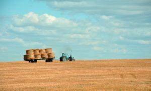 Digitale Technologien können die Arbeit in der Landwirtschaft beträchtlich erleichtern.