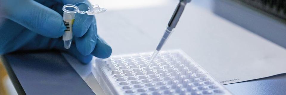 Targeted Metabolomics – Neue Wege in der Personalisierten Medizin