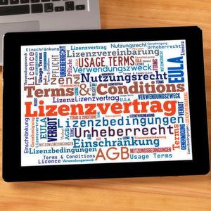 Software-Lizenzverträge verstehen und nutzen