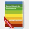 Energieeffizienz in der Prozessindustrie