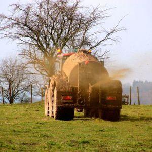 Laut dem Nitratbericht 2016 der Bundesregierung weisen fast ein Drittel der Messstellen für die Grundwasserqualität zu hohe Nitratwerte auf. Verantwortlich dafür ist vor allem der übermäßige Einsatz von Stickstoffdüngern in der Landwirtschaft.