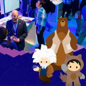 Salesforce und die Service Cloud Einstein